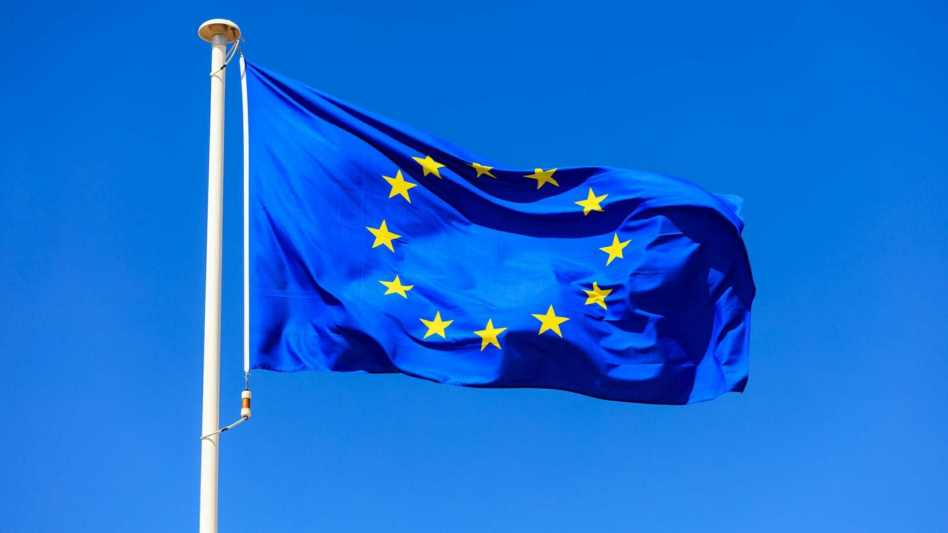 Newly elected European Parliament expected to develop greener policy
